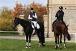 tip sporthotelu: vyjížďky na koních